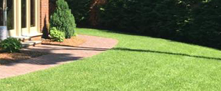 Lawn Care for Bergen County